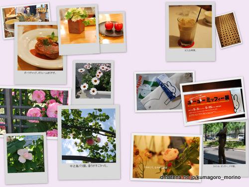 f:id:kumagoro_morino:20110516090837j:image