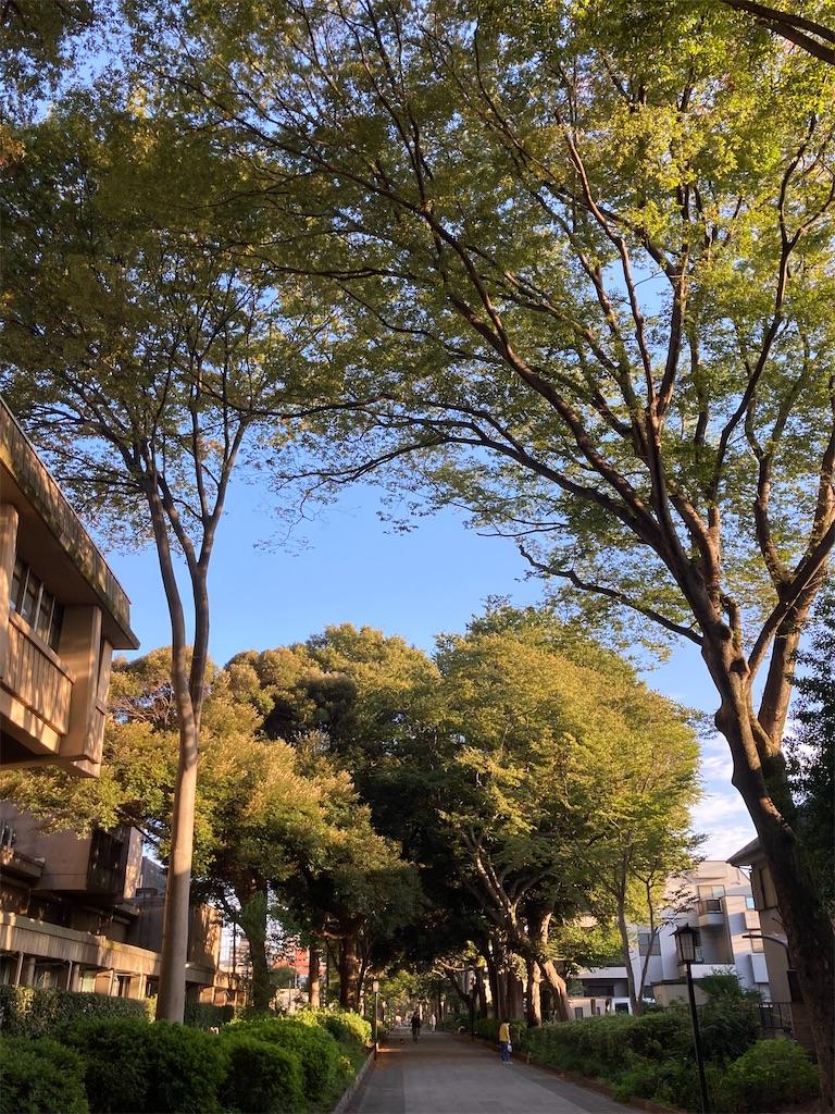 f:id:kumai-shun:20210928082136j:image