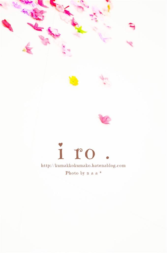 f:id:kumakkokumako:20161226132521j:image