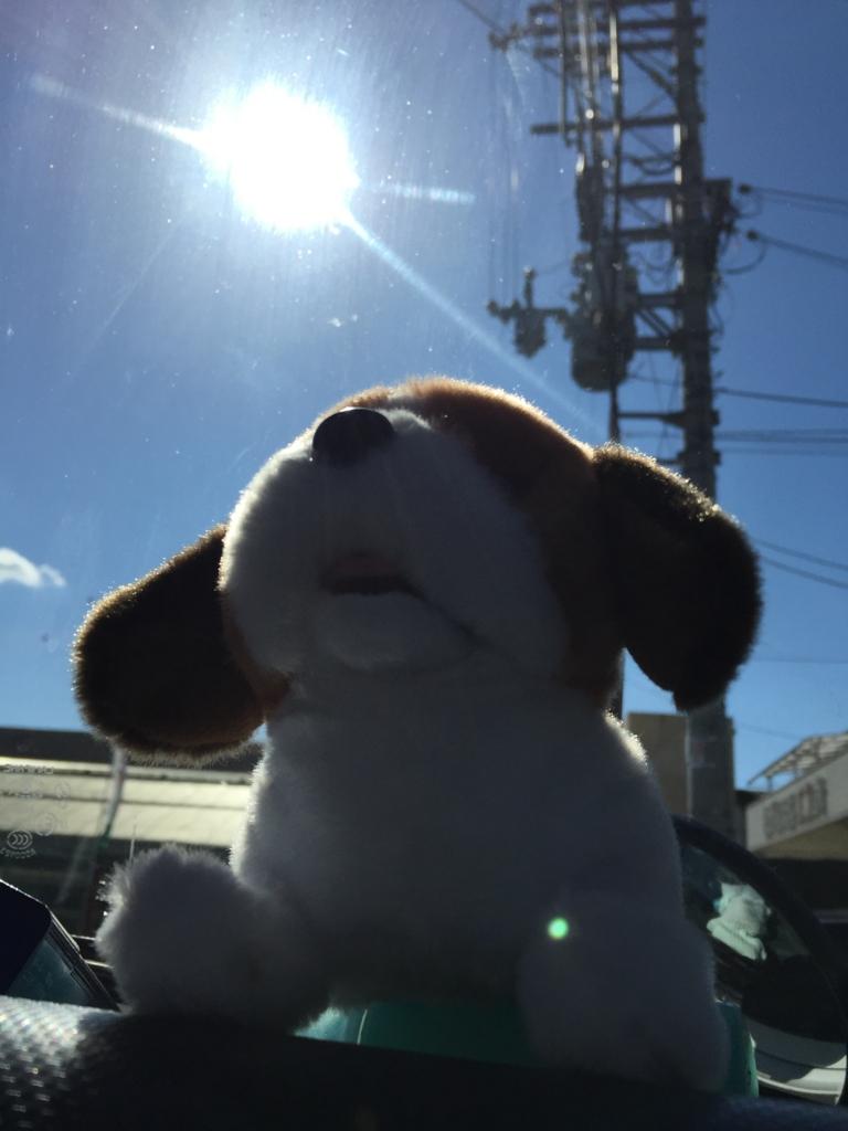 f:id:kumakuma-le-leve-bass_2-29:20161030102047j:plain