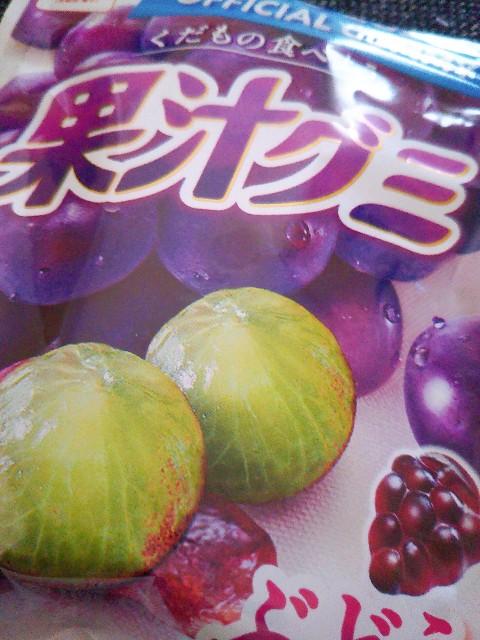 f:id:kumakuma_iruka:20210127200722j:image