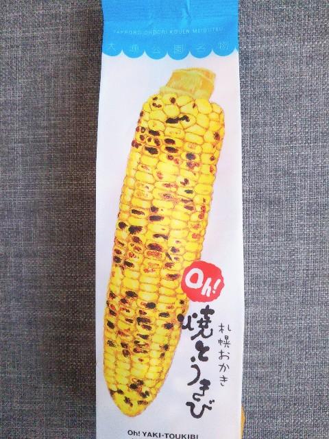 f:id:kumakuma_iruka:20210331191013j:image