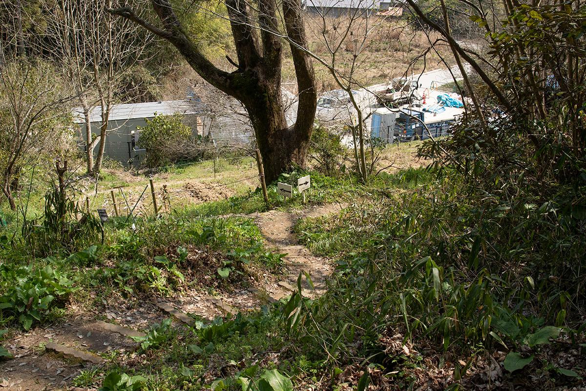 森野旧薬園