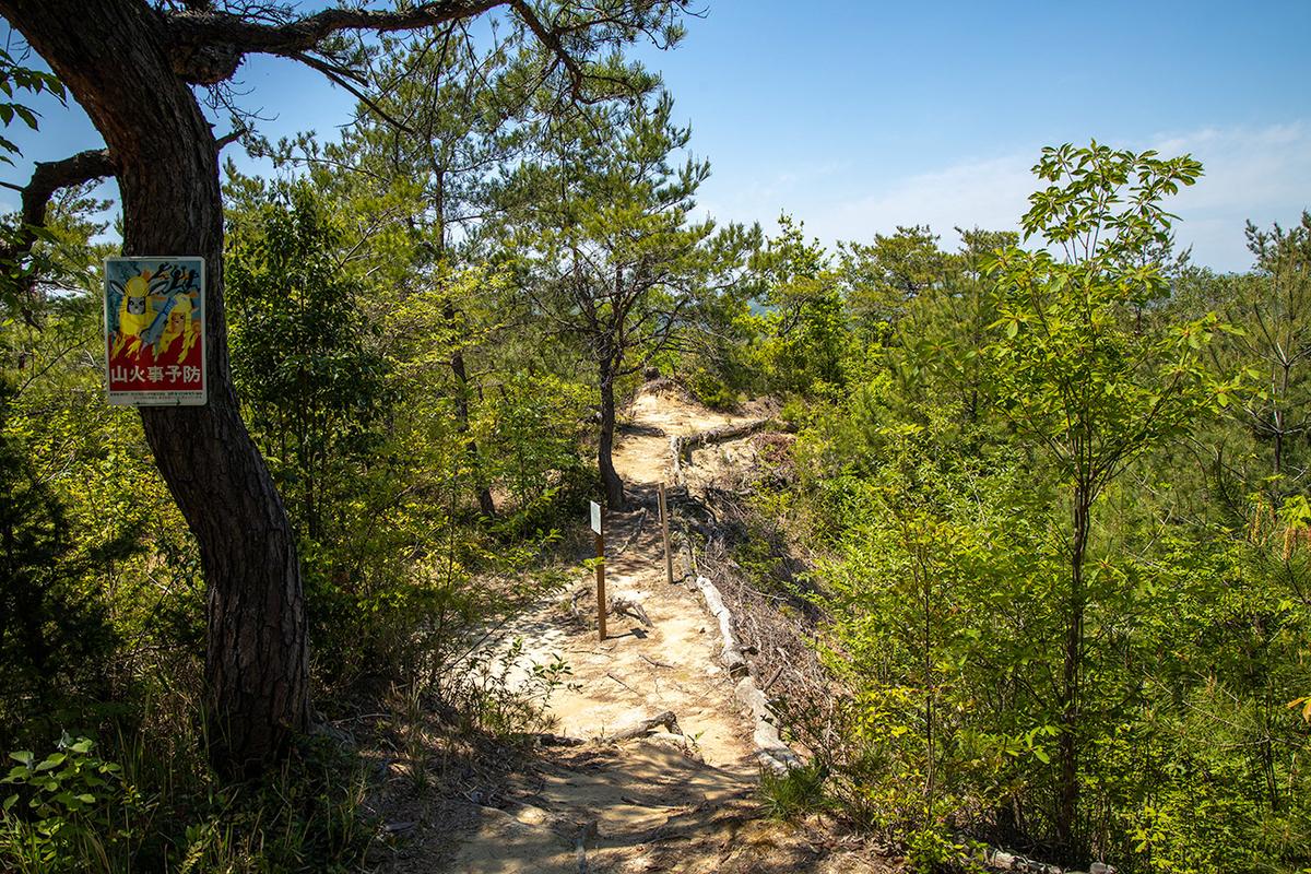 旧国鉄福知山線をハイキング