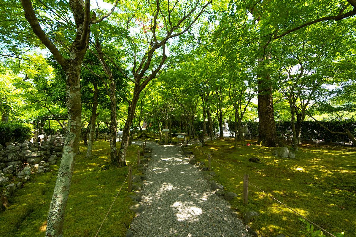 あだし野念仏寺西院の河原
