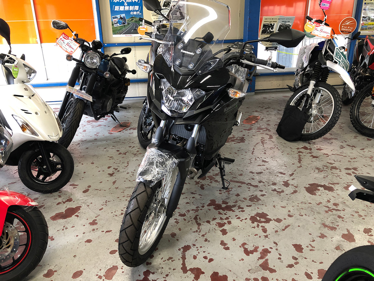Kawasaki VERSYS250