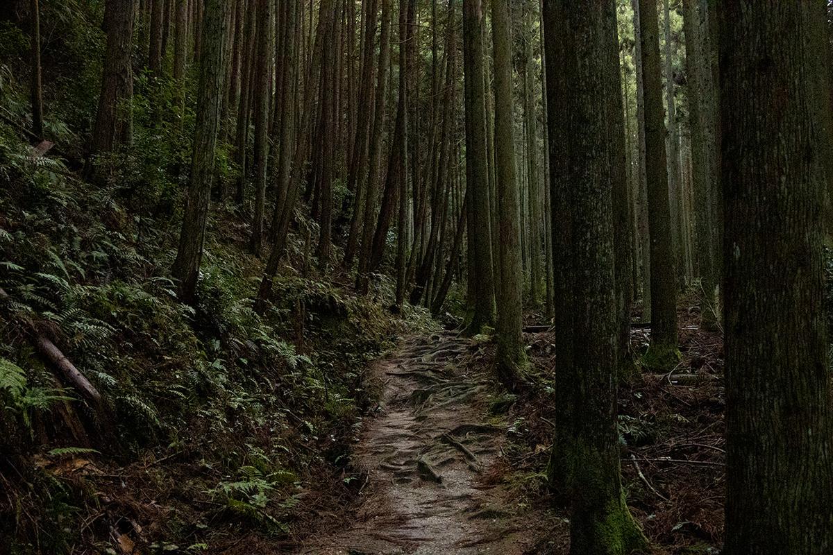 柳生天石立神社
