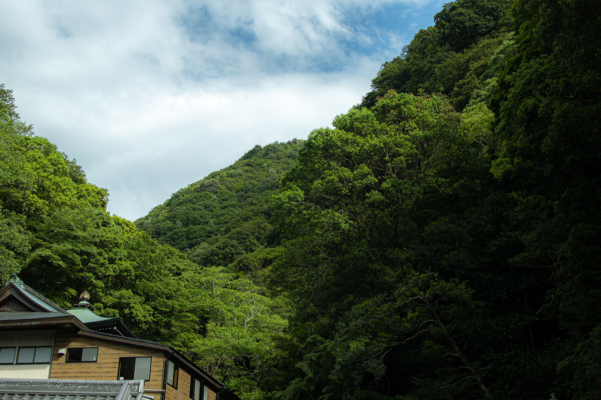 犬鳴山七宝滝寺
