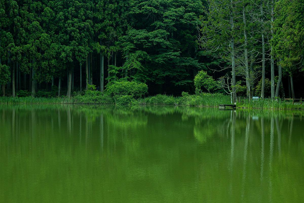 奈良の絶景スポット龍王ヶ淵