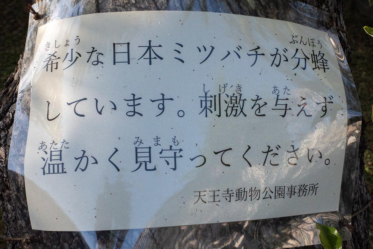 天王寺茶臼山