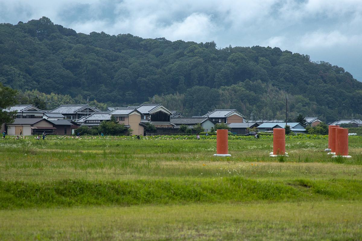 奈良県藤原宮跡