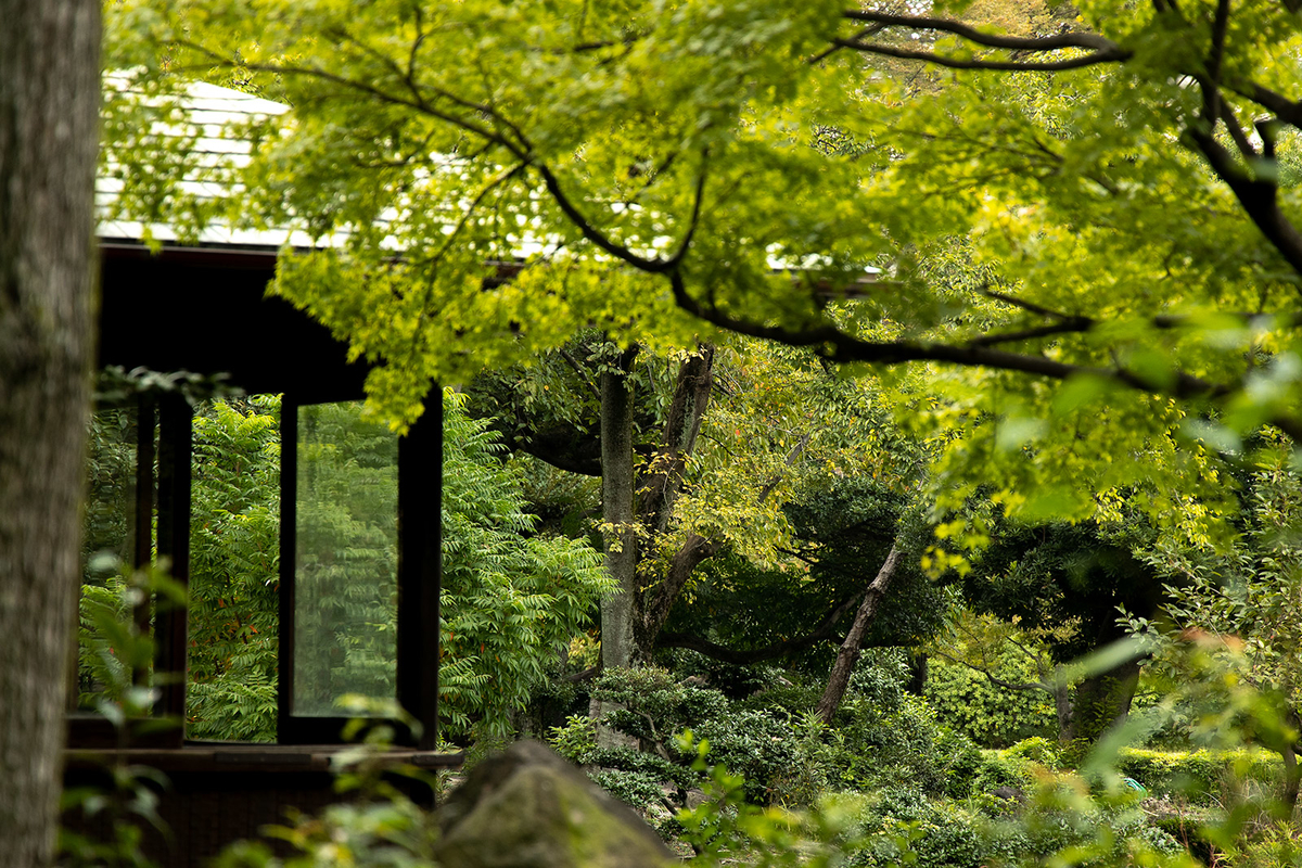 大阪天王寺公園 慶沢園