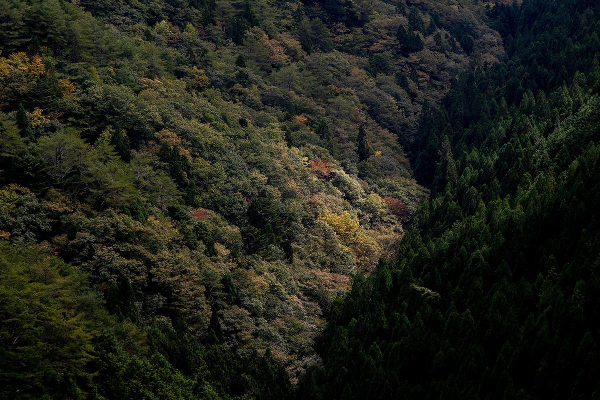 雲海景勝地、奈良県野迫川村