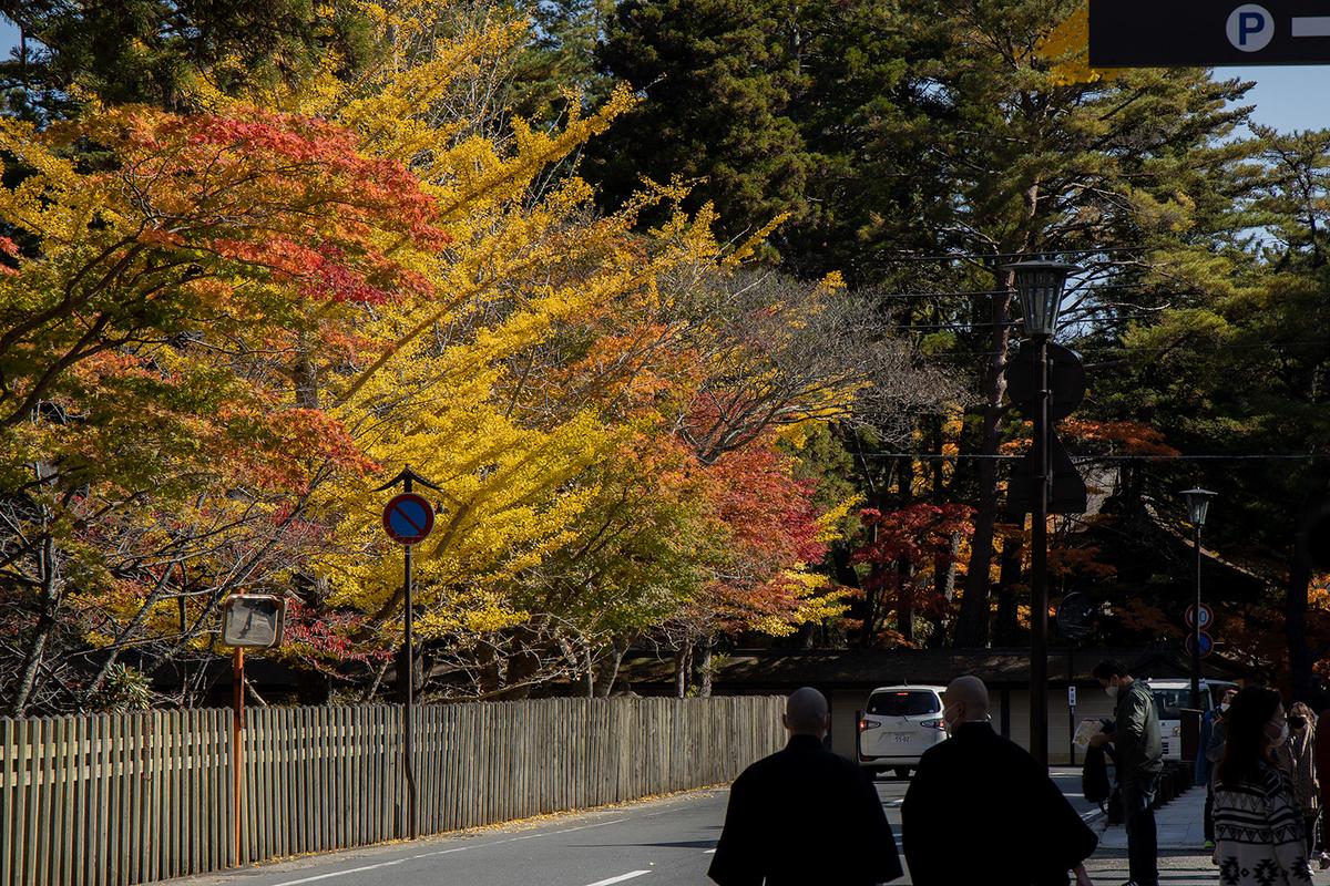 紅葉の高野山