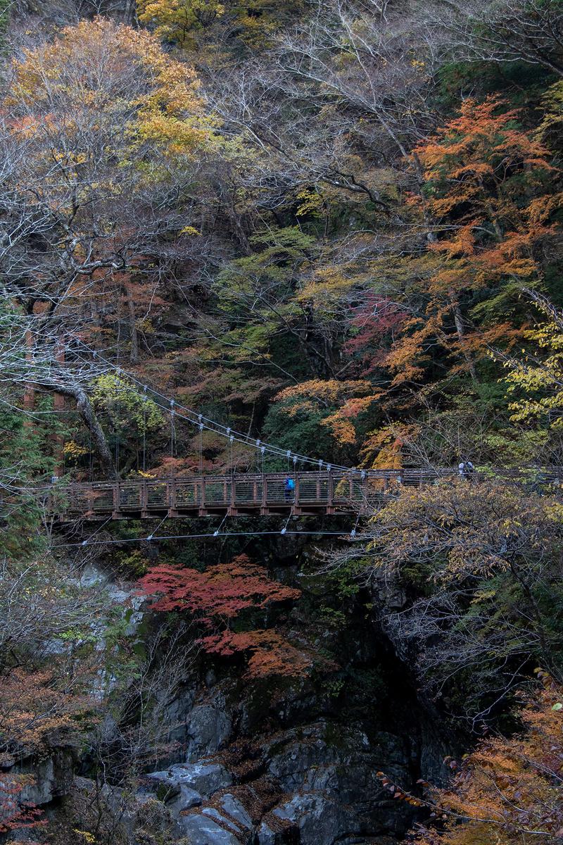 奈良県の紅葉スポット、秘境みたらい渓谷