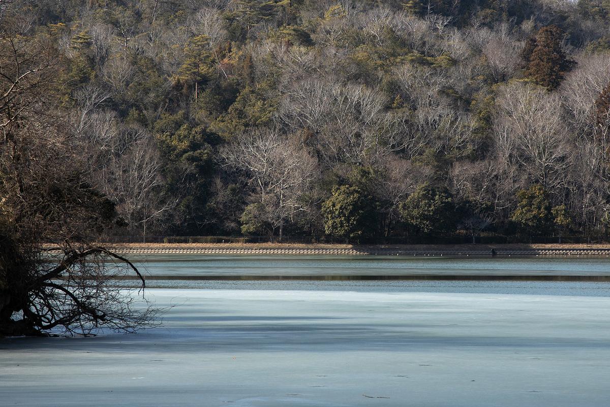 兵庫県有馬富士にて凍った千丈寺湖