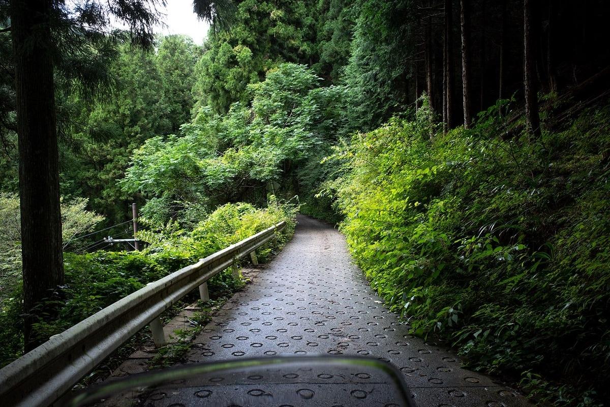 大阪滝畑ダムから大阪府道・和歌山県道61号堺かつらぎ線