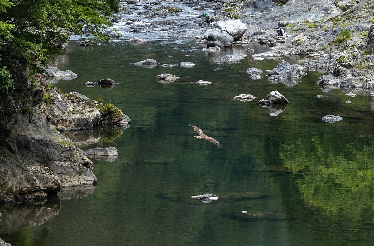 奈良県の絶景スポット。県道53号線、すずかけの道