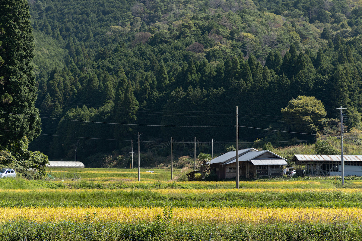 和歌山県の世界文化遺産、丹生都比賣神社(にふつひめじんじゃ)