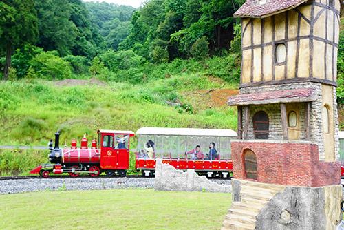 フェアリーガーデンを走る列車