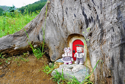フェアリーガーデンの小さな木のうち