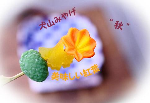 犬山城下町のおみやげ和菓子