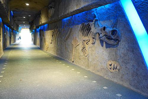 植物園へと続くトンネル通路