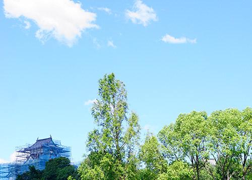 青空のもと、改修中の犬山城