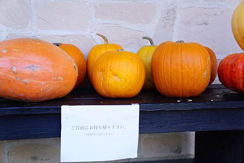 ハロウィーンデコレーションの役目を終えたかぼちゃ