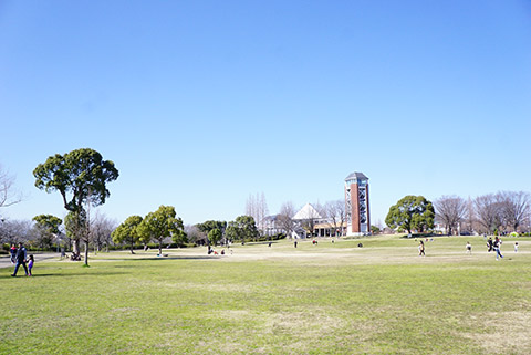 戸田川緑地公園