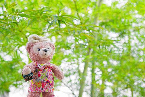 あおあおとした竹と記念撮影