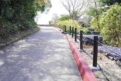 桜の回廊へ続く道