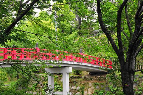 岡崎公園の龍城堀の神橋