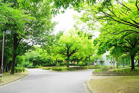 緑豊かな荒子川公園