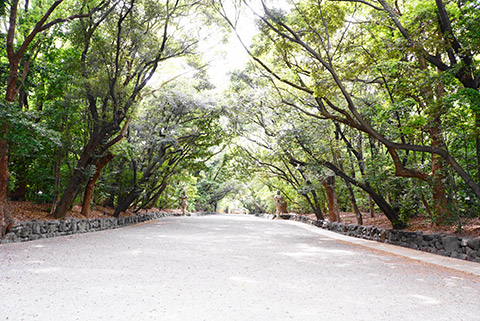 おごそかな雰囲気の熱田神宮
