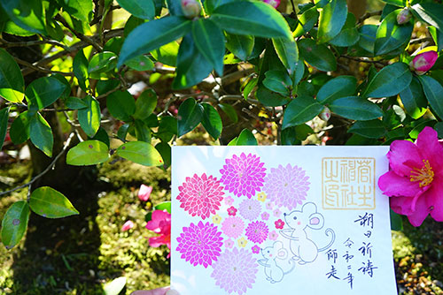 菅生神社の花手水の御朱印
