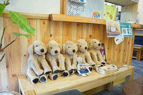 キナコカフェにいるきな粉色の犬たち