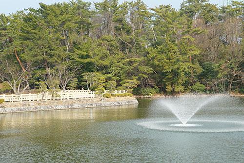 岡崎南公園の池