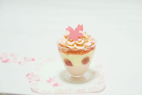 シーキューブの桜のティラミスカップ