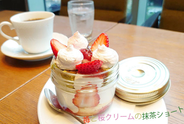 表参道珈琲舎の苺と桜クリームの抹茶ショート