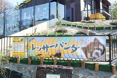 東山動物園のレッサーパンダ舎