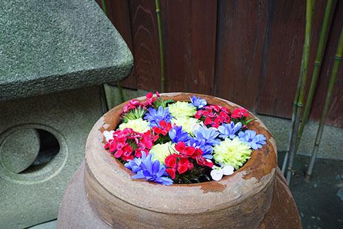 菅生神社の花手水