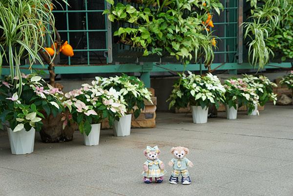 温室の中で記念撮影