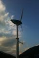 くじら風車