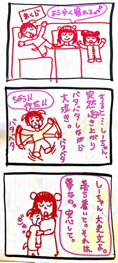 f:id:kumanamama:20190228211514j:image