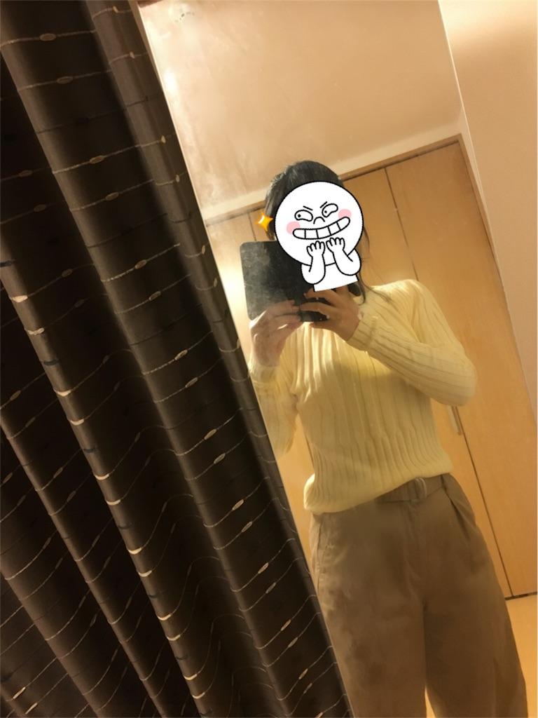 f:id:kumanego:20180131182916j:image