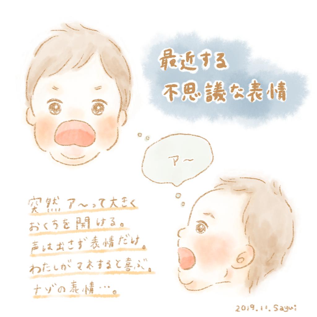 f:id:kumanekonomori:20191126191142p:plain