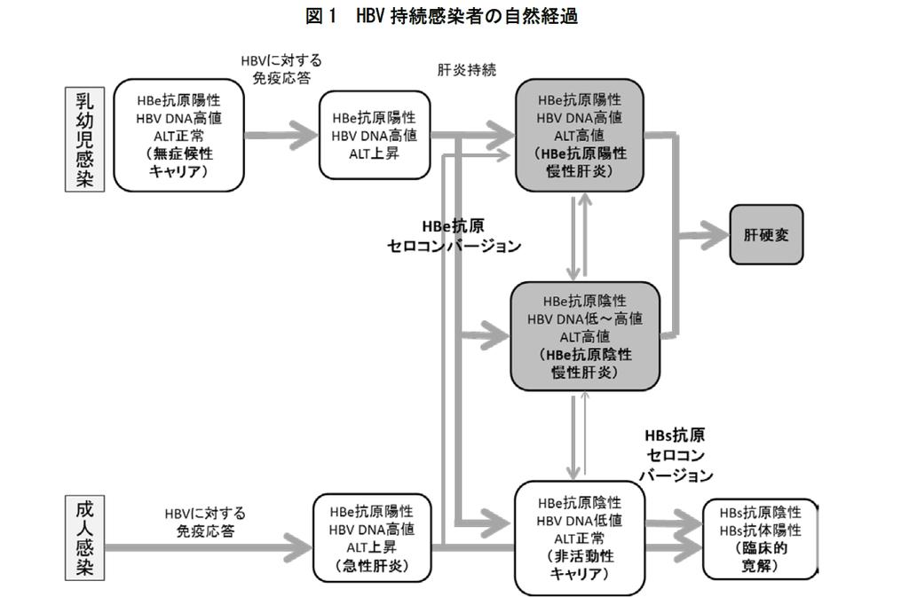 f:id:kumanomae-fc:20181013083747p:plain