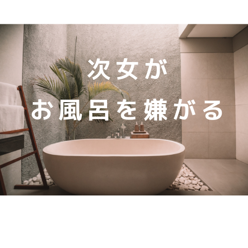 f:id:kumanomi-mama:20190519150838p:plain