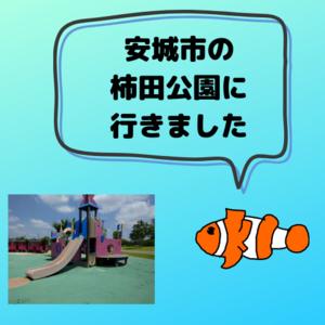 f:id:kumanomi-mama:20190621142104p:plain